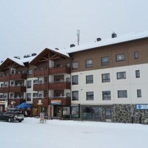 Ski Chalet Vii 7406